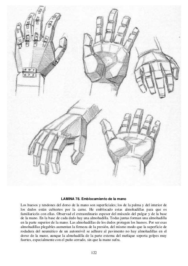 Andrew Loomis Dibujo De Cabeza Y Manos Espanol Libro Dibujo Libro De Dibujo Dibujo Basico