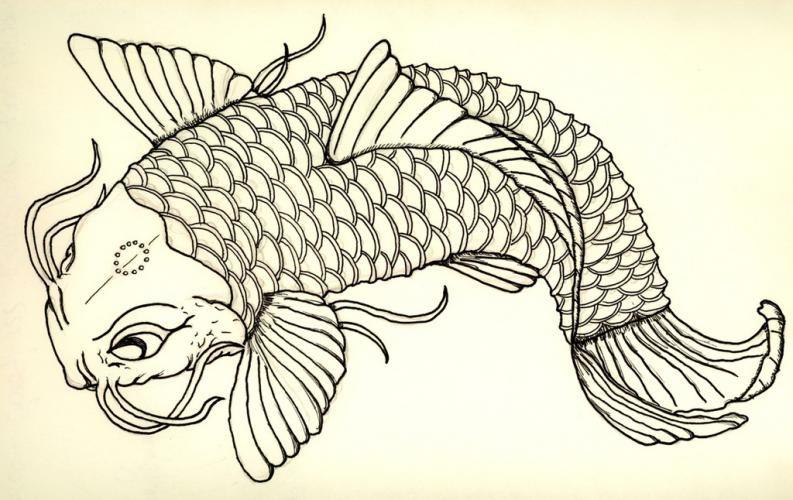 Plantillas para tatuajes del pez koi japanese koi for Imagenes de peces chinos