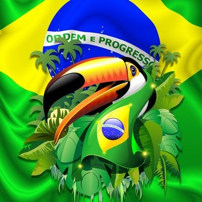 Toco Toucan With Brazil Flag Art Print By Bluedarkart