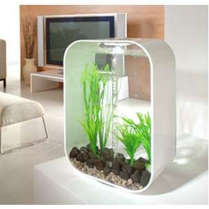 Modern fishtank home design for Modern fish tanks