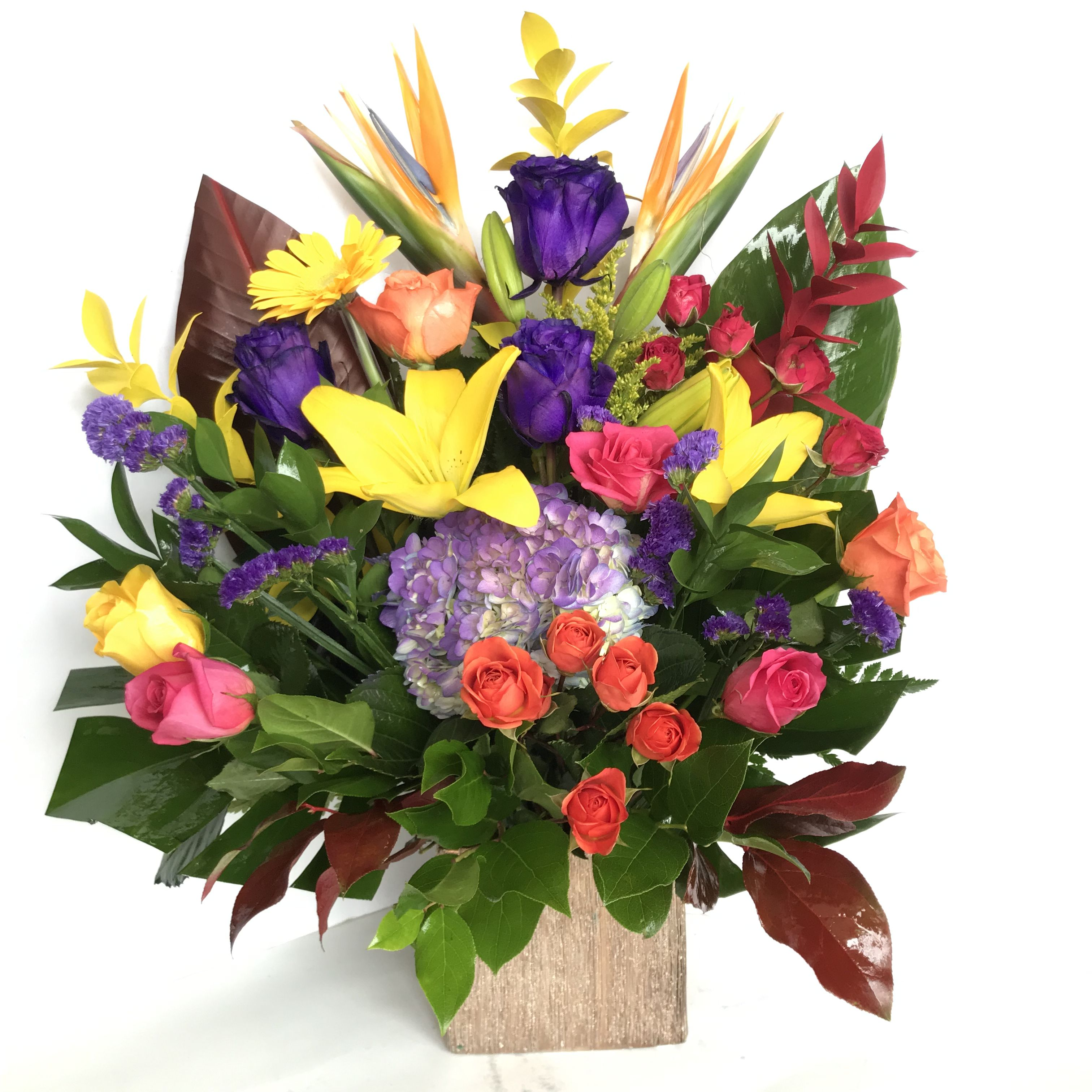 Bloom with angies floral designs online flower delivery