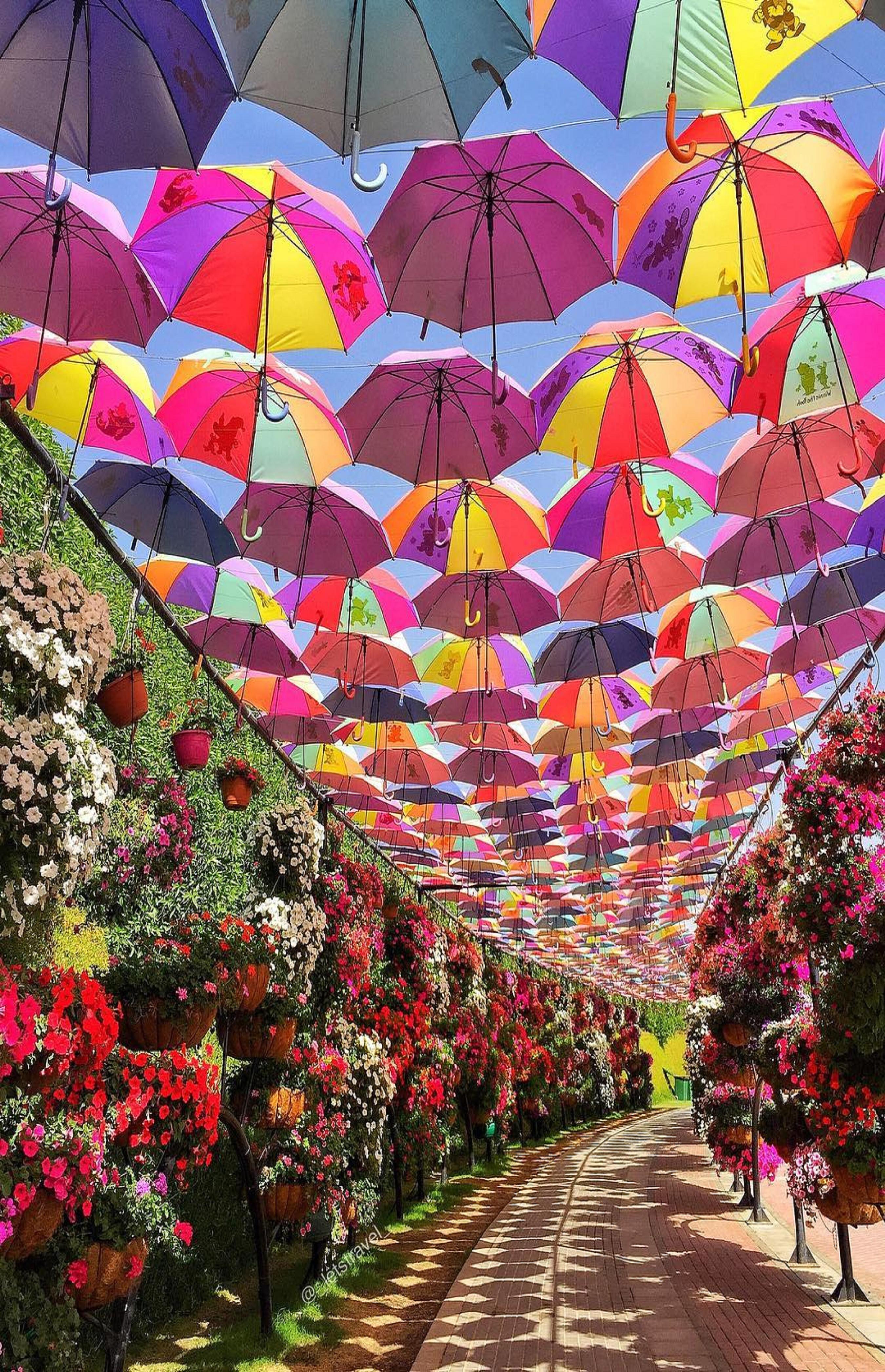 Pin by ivanka kostova on DESIGNS Miracle garden, Dubai