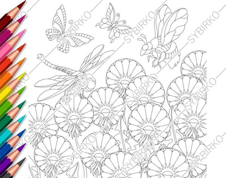 Coloring Pages For Adults Dandelion Flowers Adult Coloring Pages