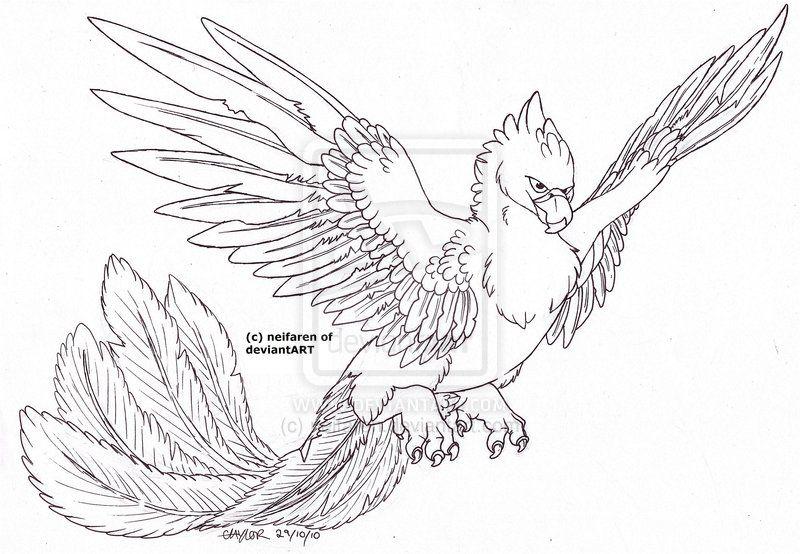 Phoenix Lineart By Neifaren D32u45l Jpg 800 554 Mermaid Coloring Pages Bird Coloring Pages Coloring Pages