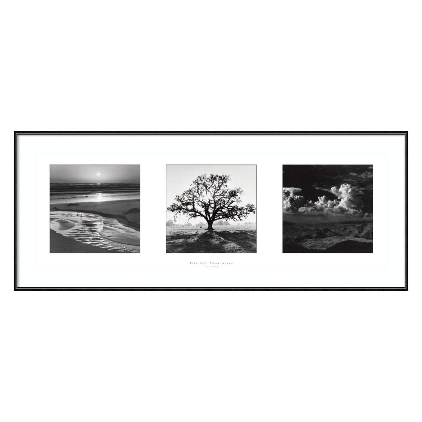 Have To Have It Fiat Lux Trilogy Framed Wall Art By Ansel Adams 36 01w X 14 01h In 236 99 Hayneed Modern Wall Art Canvas Ansel Adams Framed Art Prints