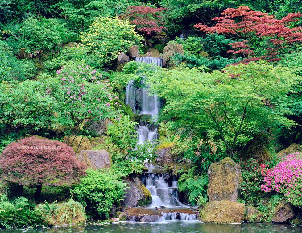 japanese gardens,oregon