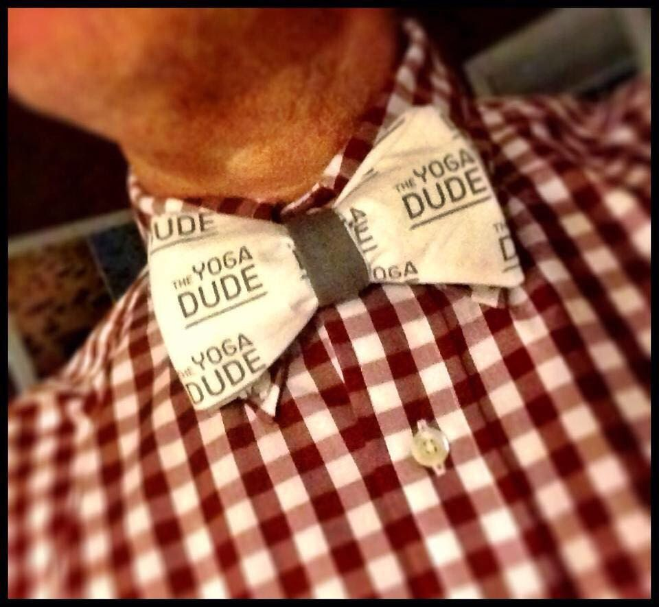 A personal favorite from my Etsy shop https://www.etsy.com/listing/216560373/mens-bow-tie-company-logo-mens-bow-tie