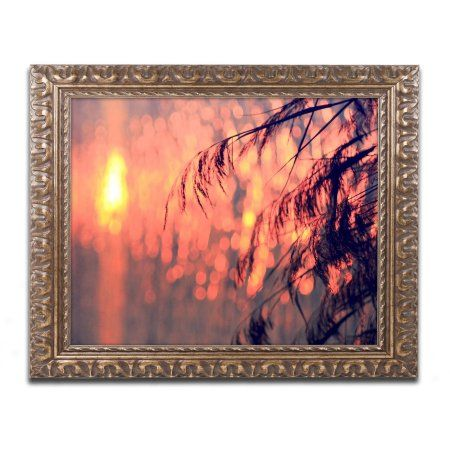 Trademark Fine Art Sunset Wishes Canvas Art by Beata Czyzowska Young, Gold Ornate Frame, Size: 16 x 20