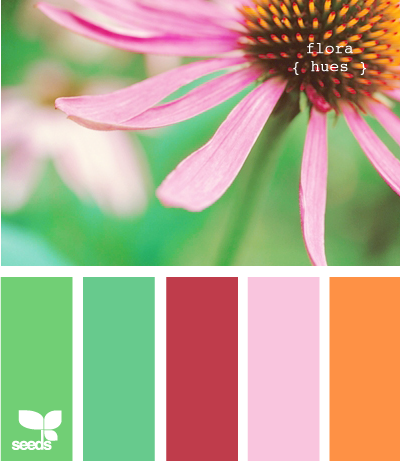 Color Wander | Bright, Design seeds and Color inspiration