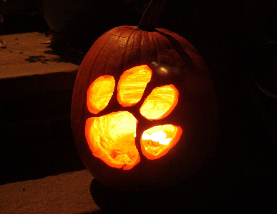 Clemson Tigers Pumpkin Easy Pumpkin Carving Pumpkin Carving Amazing Pumpkin Carving