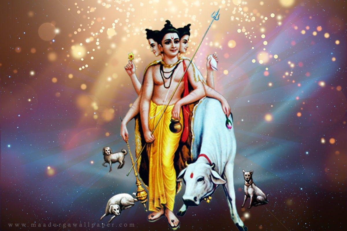 Sri Swami Samartha Full Hd Computer Wallpaper Dawlonod: Dattatreya Photo, Pics HD Wallpaper Download
