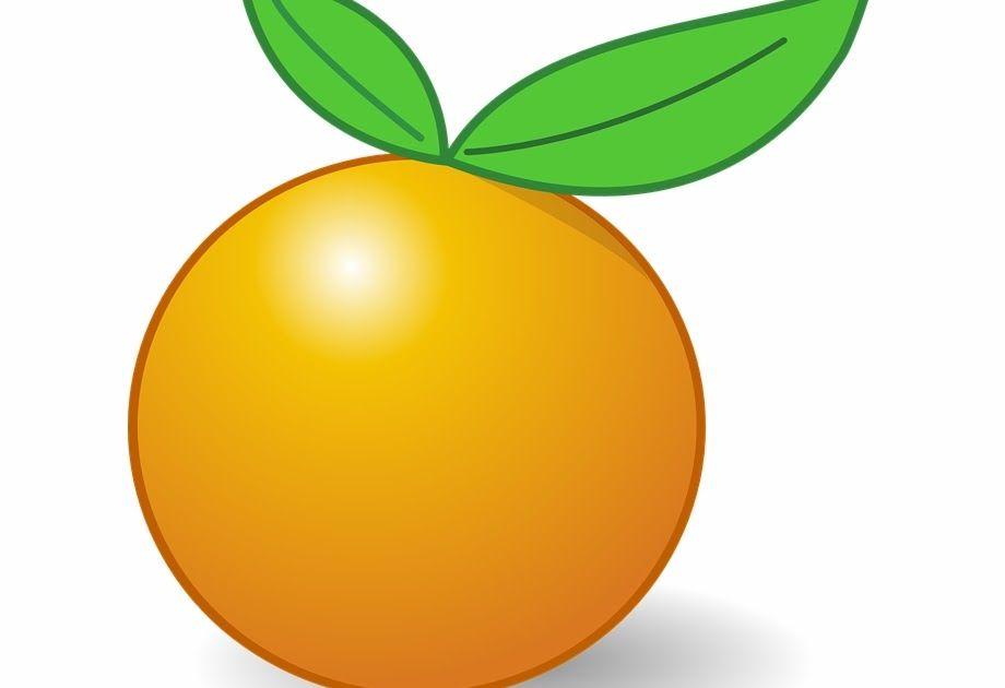 Menakjubkan 22 Gambar Buah Jeruk Orange Fruit Leaves Citrus Tropical Healthy Gambar Kartun Buah Gambar Buah Jeruk Nama Ilustrasi Buah Gambar Kartun Kartun