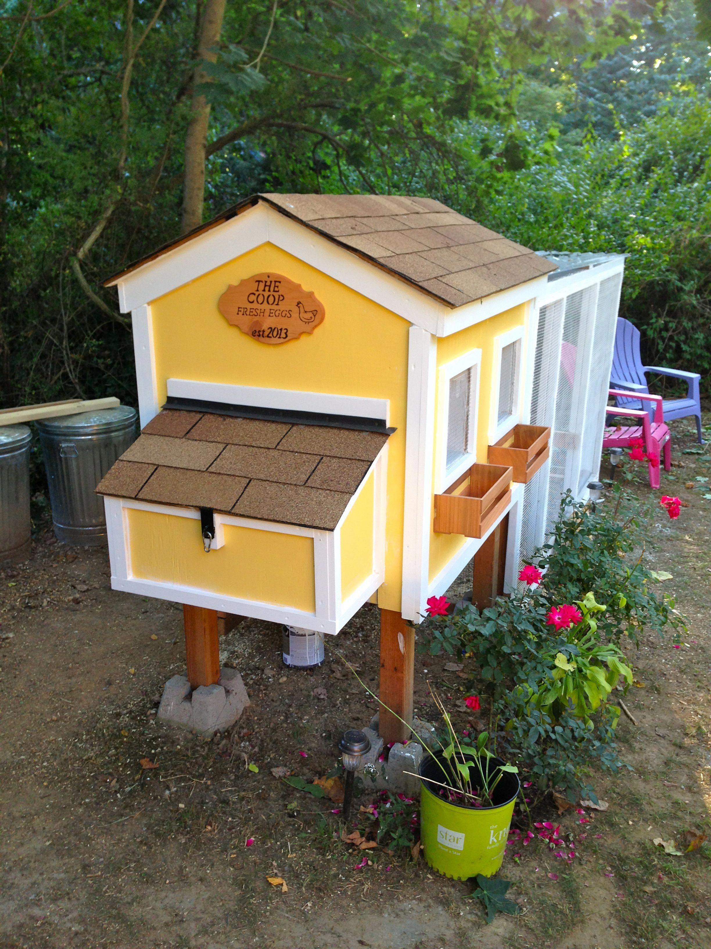22 Low Budget Diy Backyard Chicken Coop Plans: Diy Chicken Coop Plans, Diy Chicken Coop, Chickens Backyard