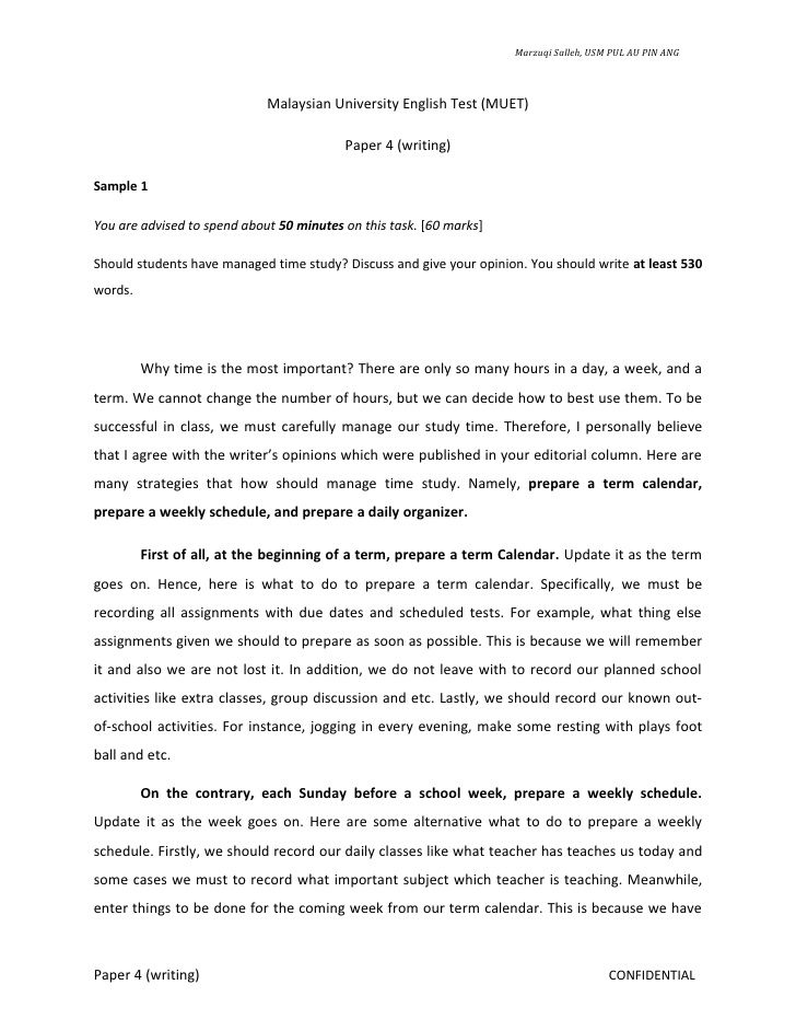 Fifth Business Essay  Apa Format Essay Example Paper also Thesis Statements Examples For Argumentative Essays Pin On Places To Visit Computer Science Essays