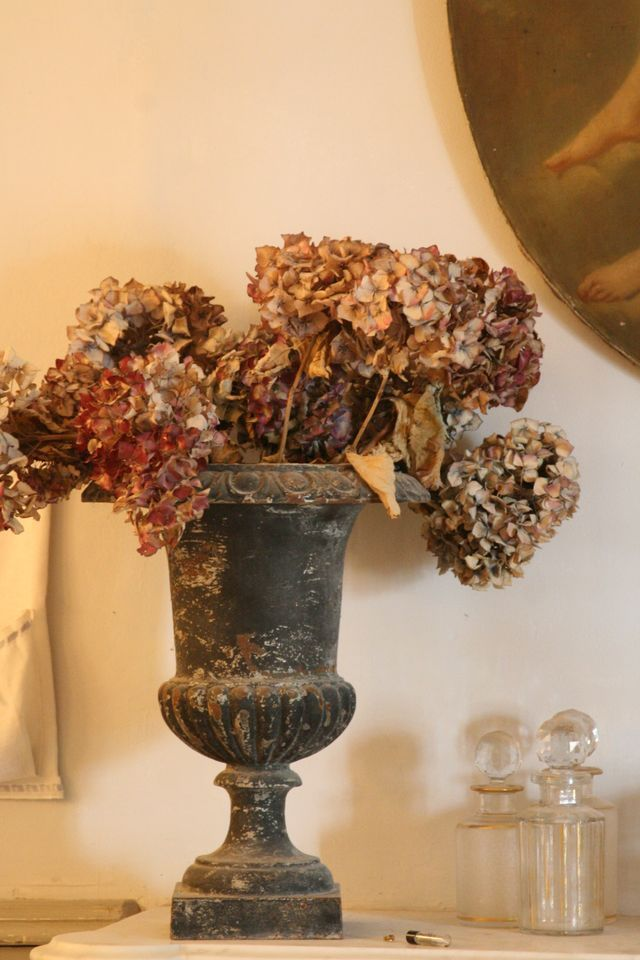 Dried hydrangeas in urn.