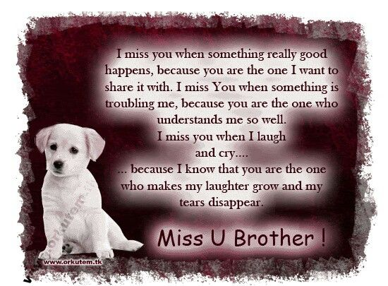 Miss My Big Brother Quotes3 Pinterest Brother Quotes Miss