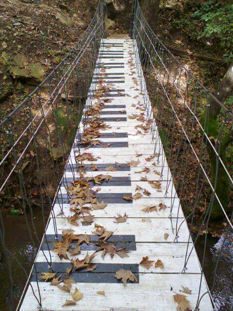 autumn rhythm notes -Pavliani, Fthiotida, Greece