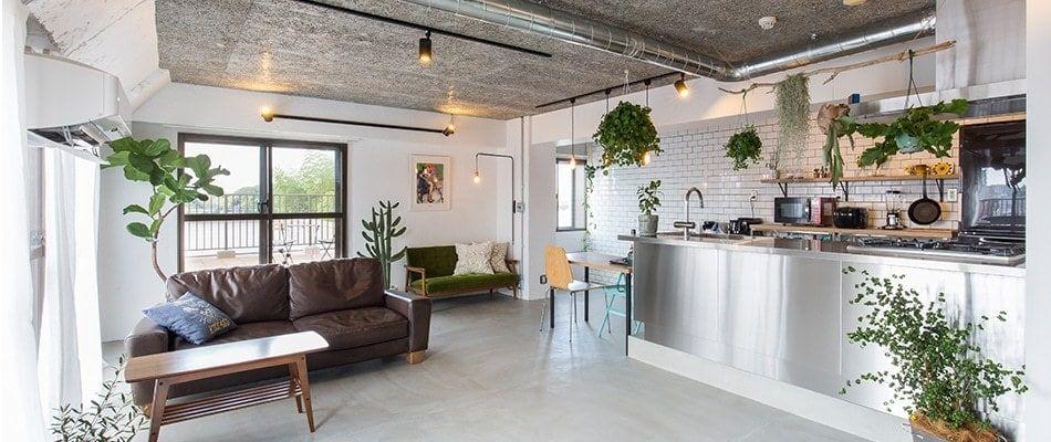 グリーンと光が映える 全面モルタル床の家 リビング 自宅で リノベーション 設計