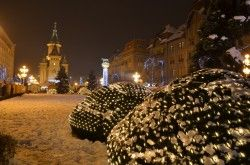 Magia de la Timișoara – centrul în prima zi a noului an