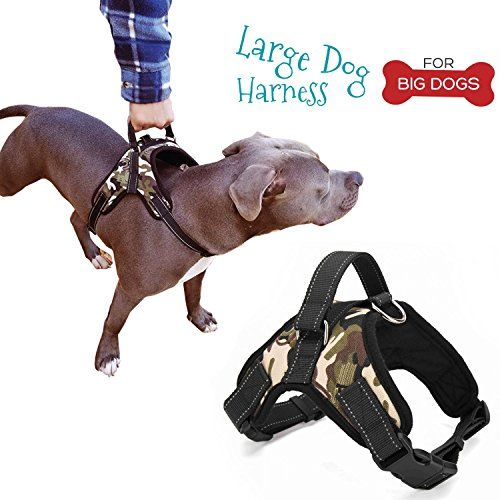 Dog Owners Listen To These Solid Ideas Large Dog Harness Dog