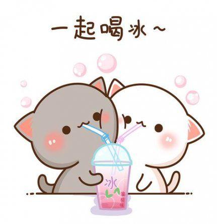 Latest Funny Anime Super Funny Anime Kawaii Animal Pictures 43 Ideas Super Funny Anime Kawaii Animal Pictures 43 Ideas #funny 9