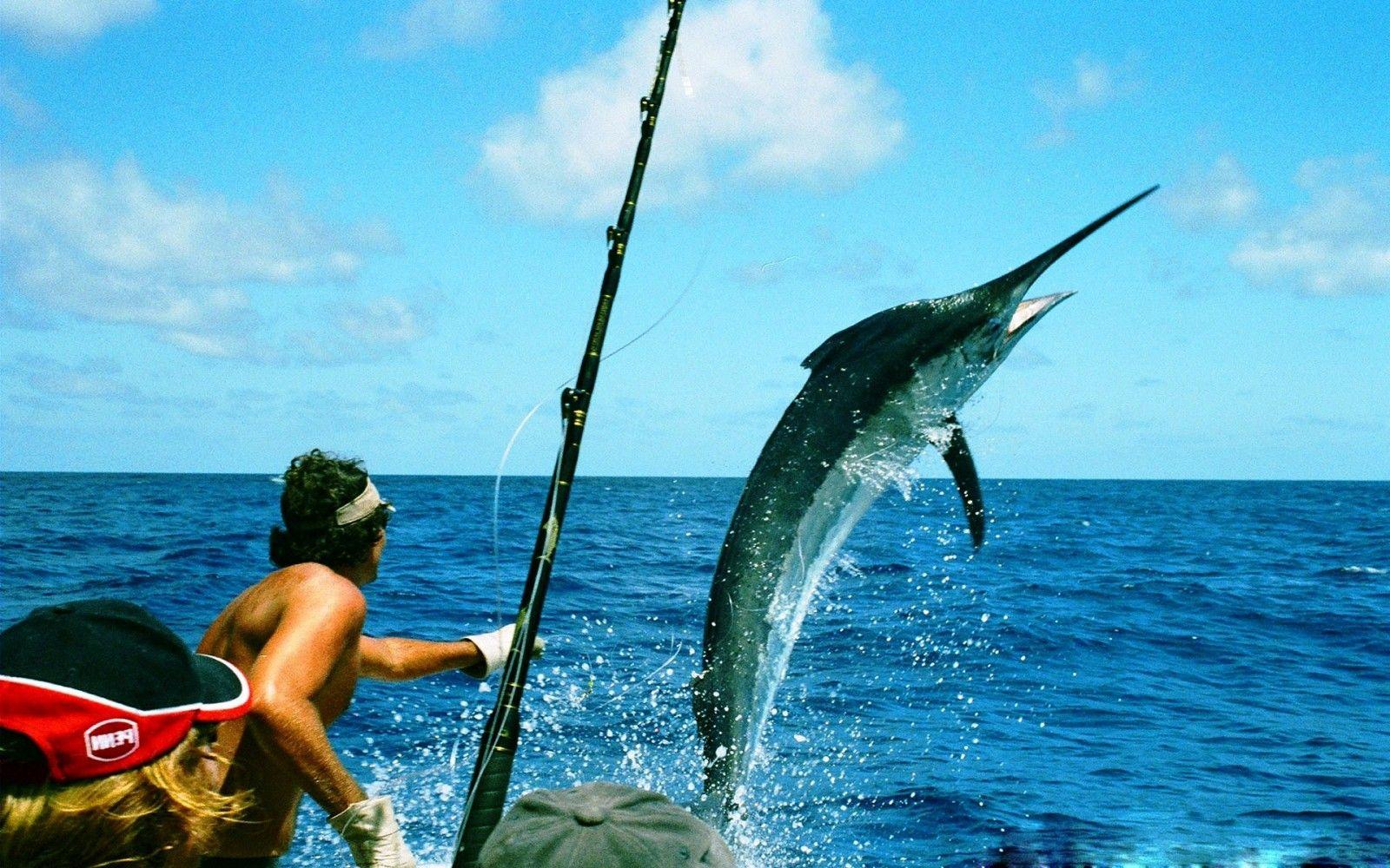 Fishing Google Search Offshore Fishing Boats Fishing Techniques Sea Fishing Rods