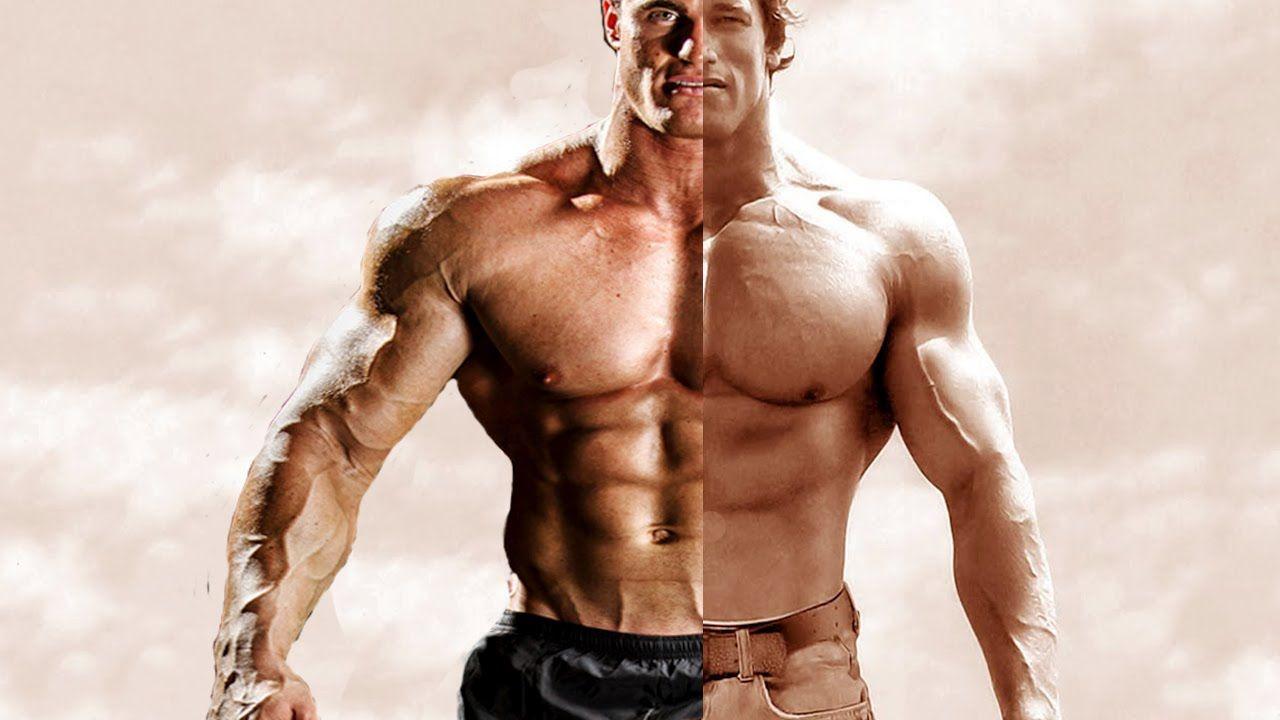 Arnold Schwarzenegger vs Calum Von Moger Fitness and ...