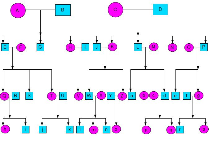 Family Tree Template With Siblings | Tree templates and Family trees