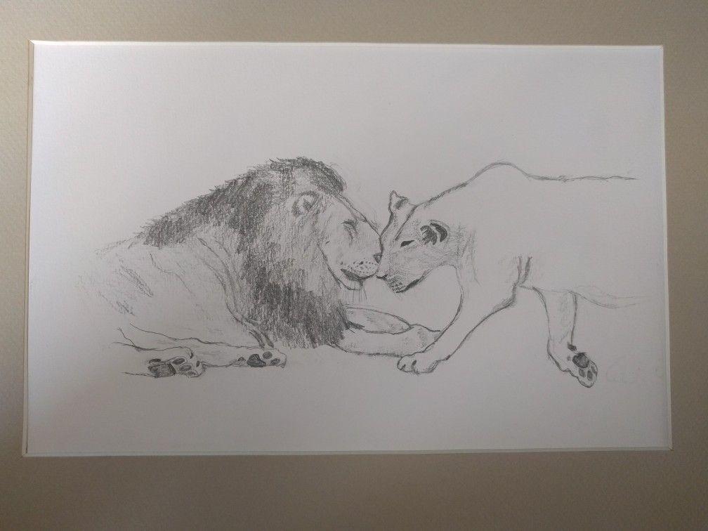 Leeuw en leeuwin.