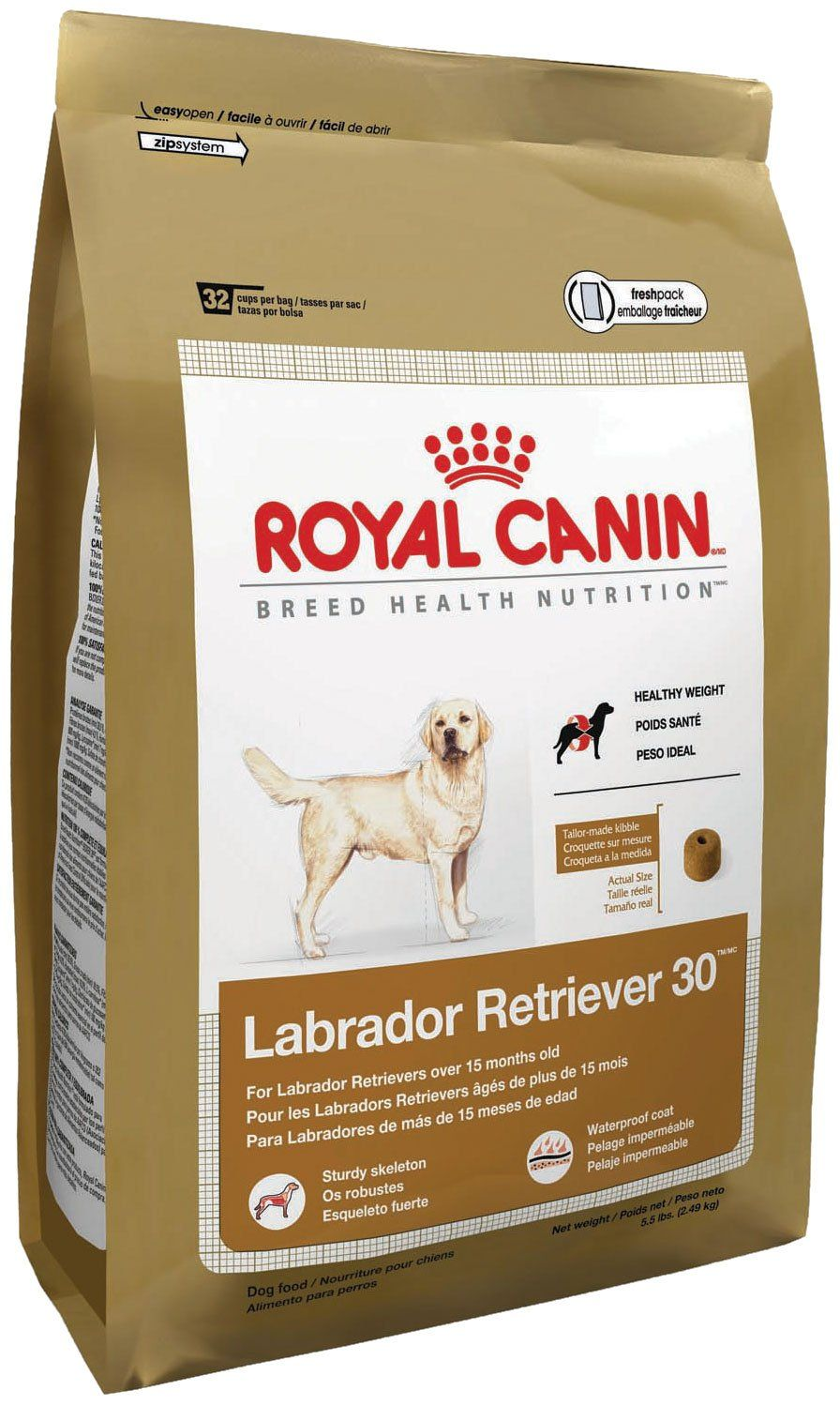 Royal Canin Breed Health Nutrition Labrador Retriever Adult Dry Dog Food 30pound Make Certain To Hav Best Dog