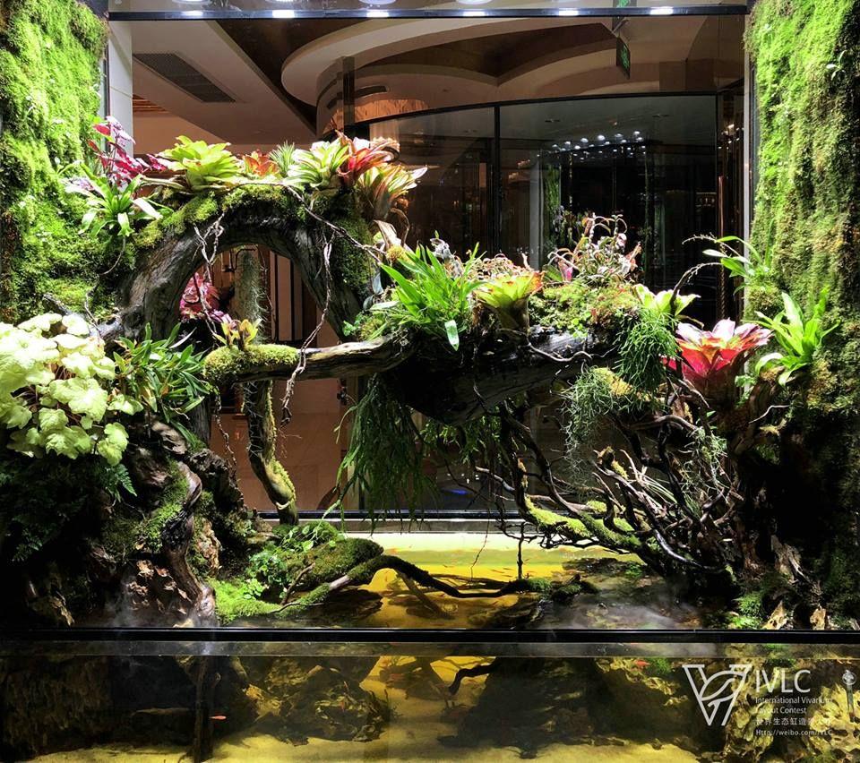 Pin by andrew nemo on Палюдариум pinterest vivarium aquariums