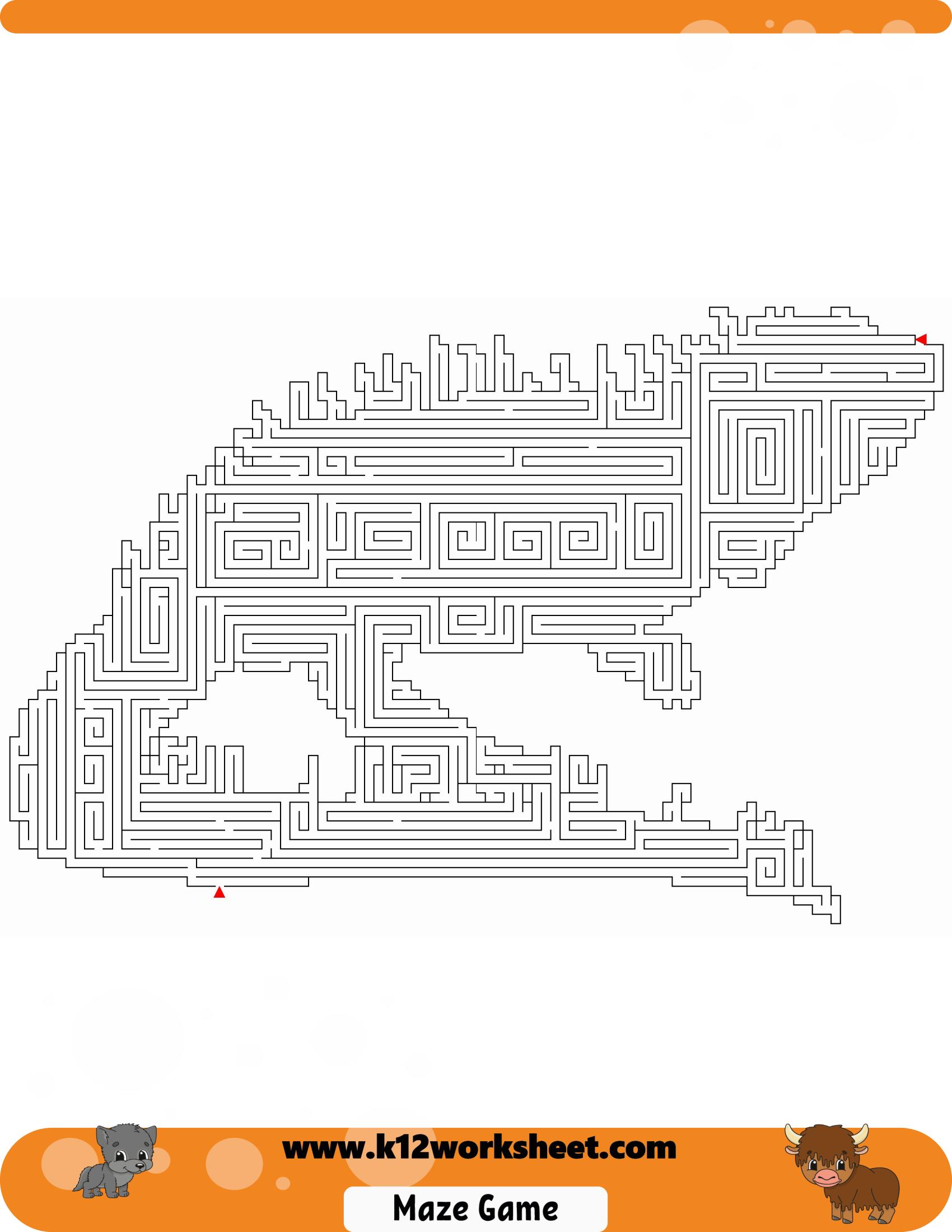 Iguana Maze Worksheet