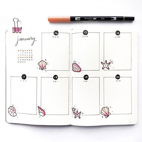 "Bujo and watercolour on Instagram: ""Hello January � Happy New Year! Decided to go with a beachy shell theme for Jan as it is the middle of summer in New Zealand � Who else…"""