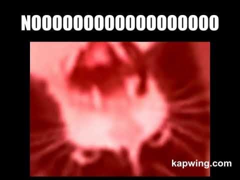 Cat meowing meme (WARNING DONT WEAR HEADPHONES VERY LOUD