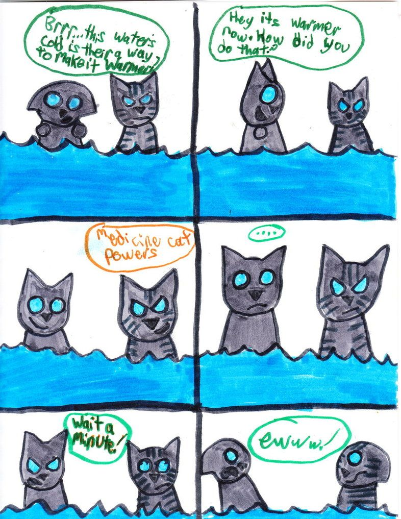 Jayfeather Has A New Medicine Cat Power Warrior Cat Pictures