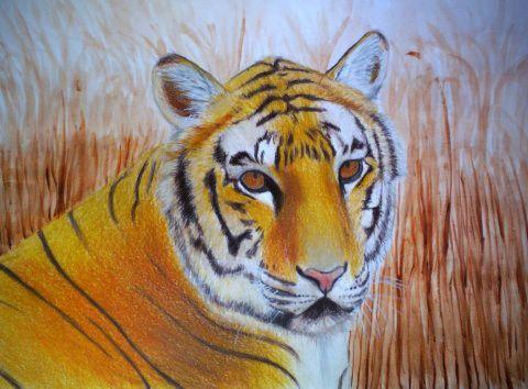 Dibujo En Tecnica Mixta Con Lapices De Colores Y Acuarelas Lapices De Colores Pinturas Lapices