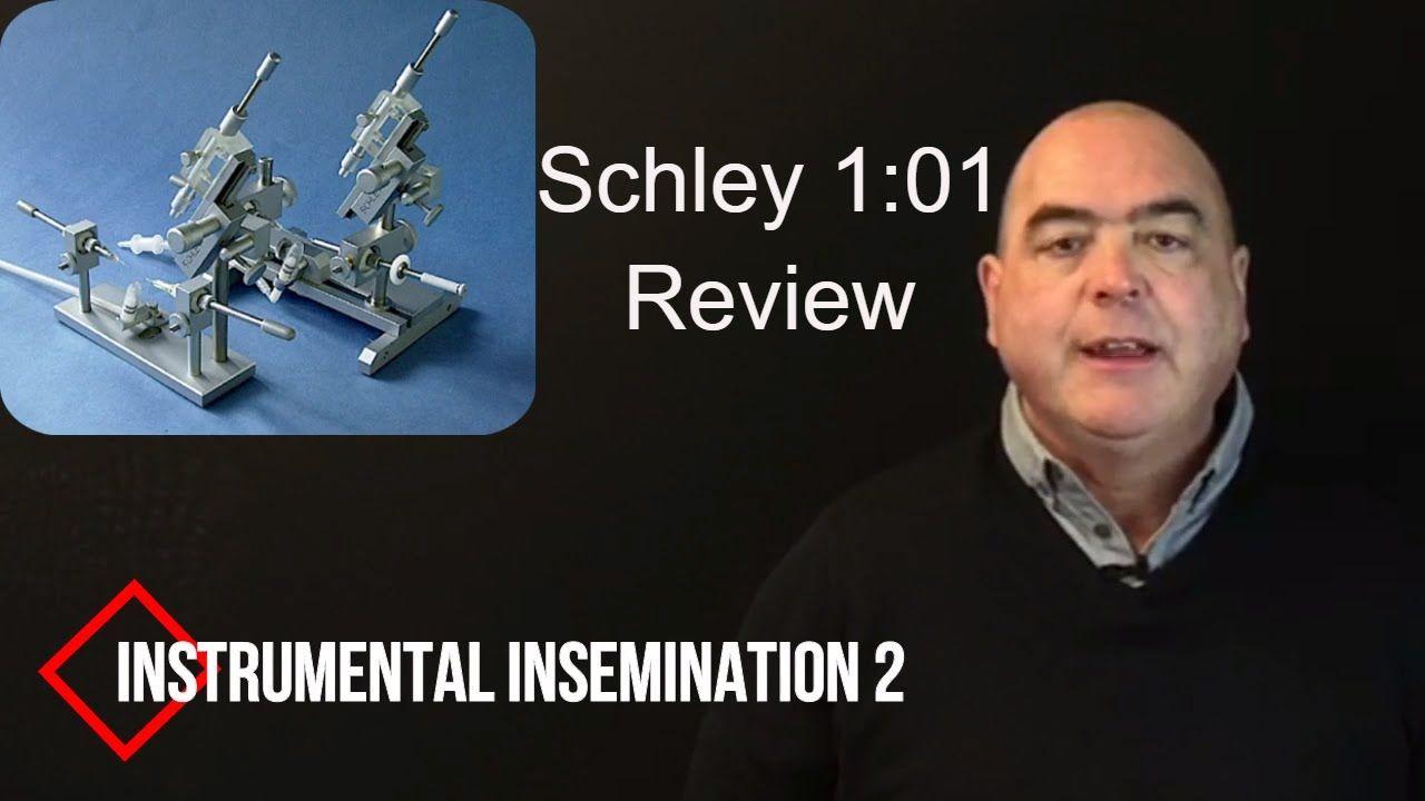 Instrumental Insemination schley 1:01 Review
