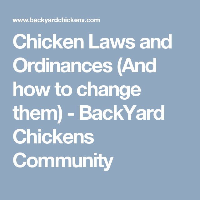 Chicken Laws And Ordinances (And How To Change Them)   BackYard Chickens  Community