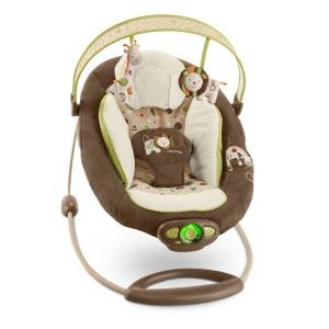 MamaNYCs Kids II InGenuity Automatic Baby Bouncer Chair for