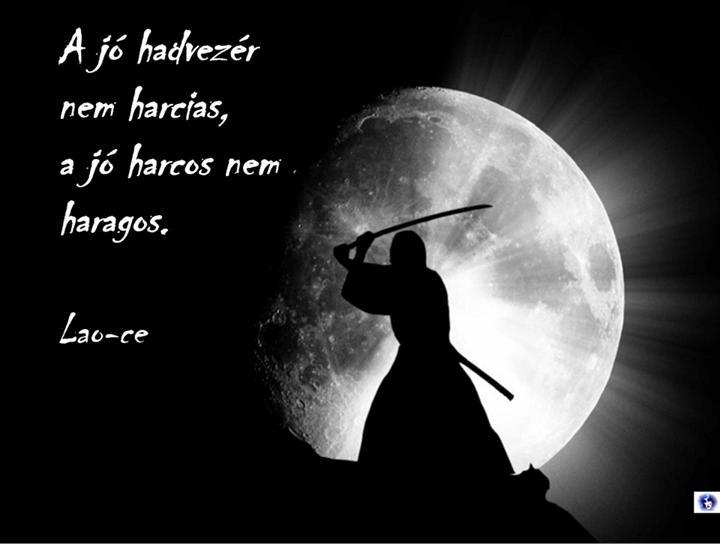 kung fu ce idézetek Lao ce idézet | Warrior quotes, Martial arts quotes, Lao tzu quotes