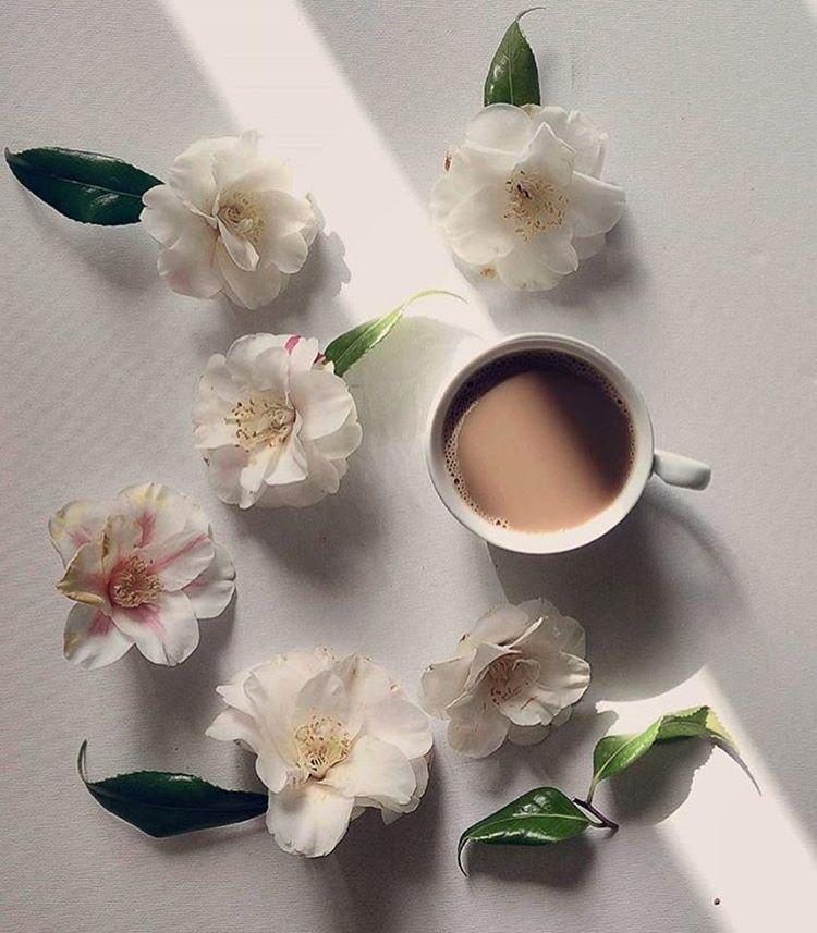 Loving coffee, tea and seasons ☕️ ❄️ Founders @clangart @marieinmay #coffeeandseasons #teaandseasons  coffeeandseasons@orange.fr