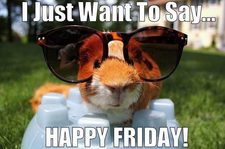 I Just Want to Say... Happy Friday. | Its friday quotes, Good morning friday,  Good morning friday images