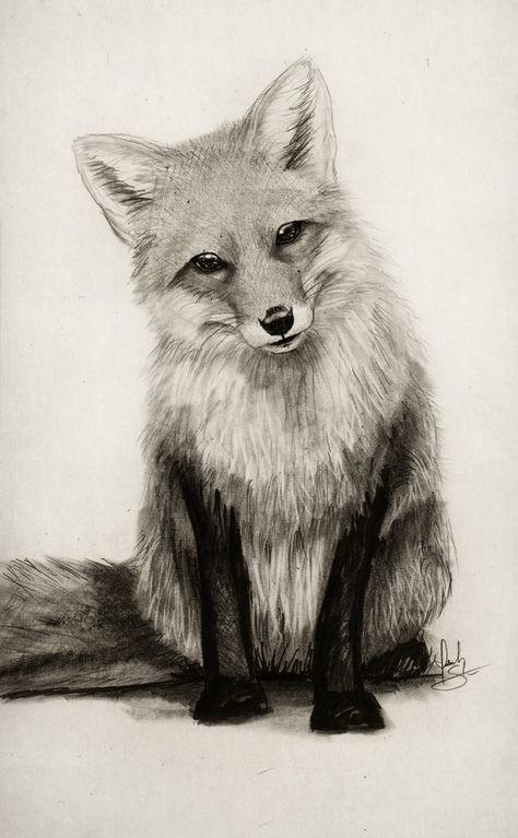 Photo of ¡¿Qué dice Fox ?! Lámina por isaiahstephens