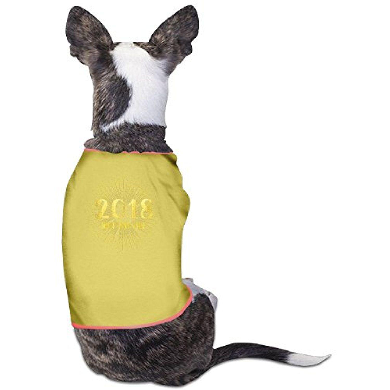 Cheap Blank Dog T Shirts Carrerasconfuturo Com