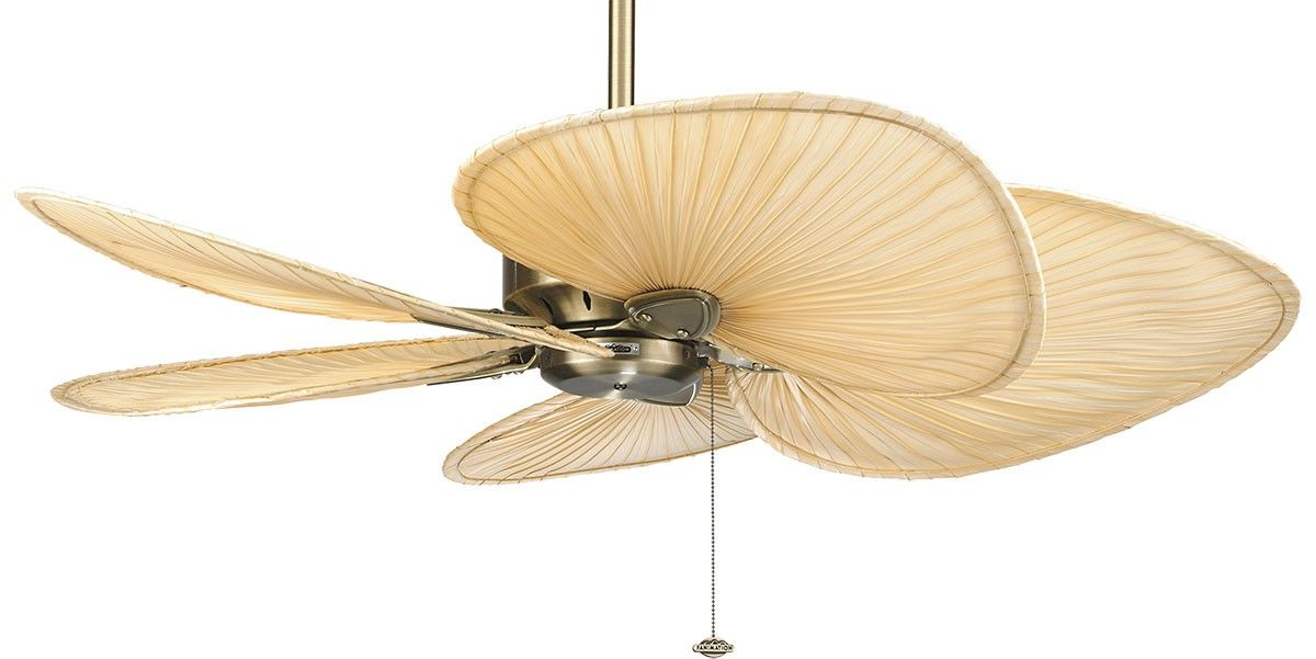 Bring A Taste Of Bali Into Any Room With The Tropical Windpointe In Antique Brass With Wide Natural Palm Blades Ceiling Fan Brass Ceiling Fan Ceiling Fan Motor