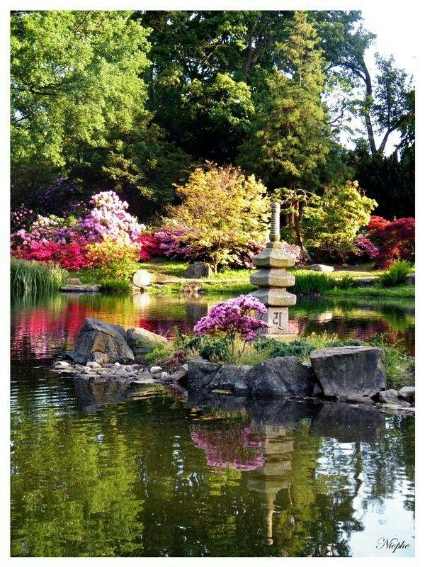 A garden in Japan beautiful isnt it!! Jenny S Lamb Pinterest - paisaje jardin