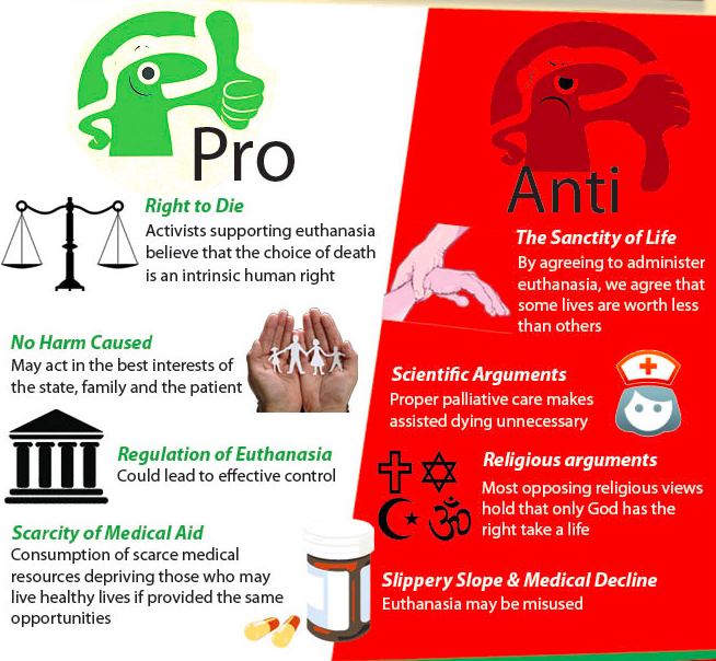 002 Pros and Cons of the practice of Euthanasia Sample