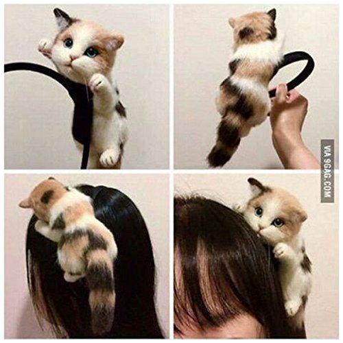 Cute Sexy Womens Attractive Vivid Cat Ear HeadBand Hair B... https://www.amazon.com/dp/B01IN3PW1W/ref=cm_sw_r_pi_dp_x_XCt8xbWGH4P0G