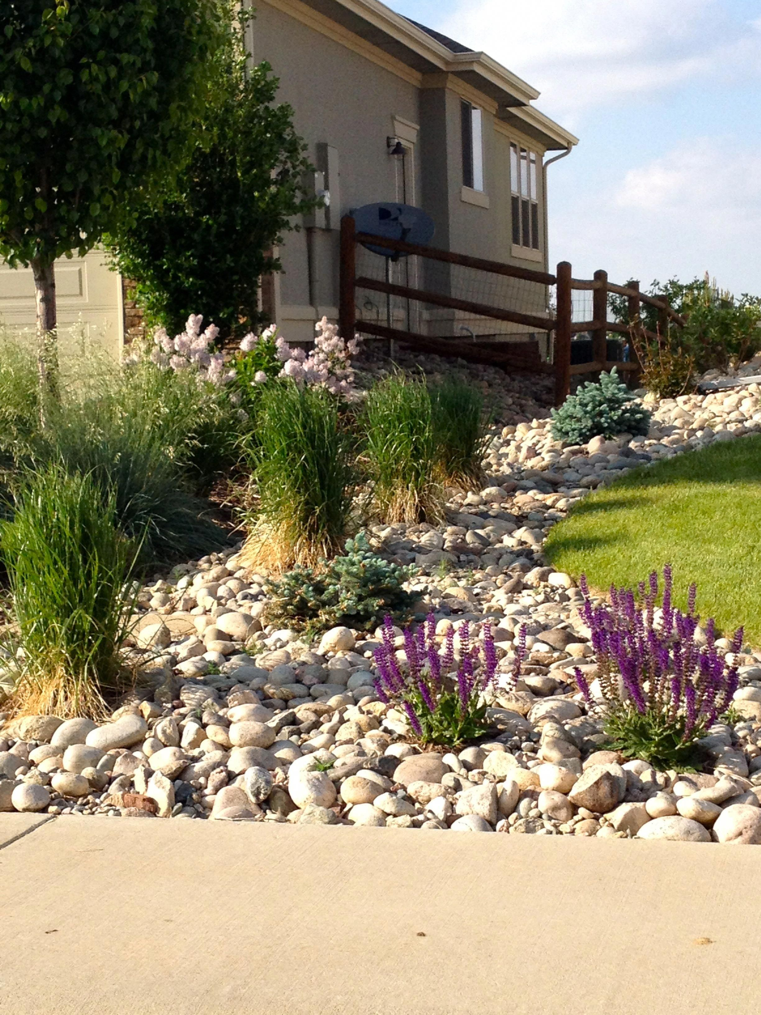 Another Shot Of The Low Maintenance Low Water Type Of Landscape We Are Looking For With Varie Low Water Landscaping Hillside Landscaping Backyard Landscaping