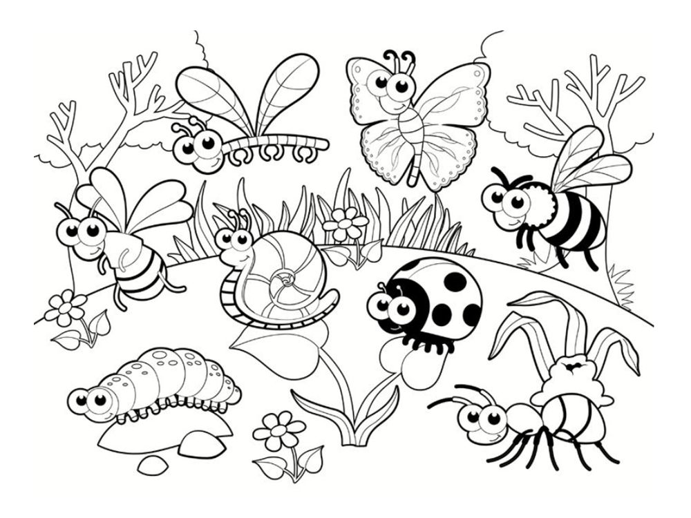Coloriage coccinelle 20 dessins imprimer gratuitement les petites betes pinterest for Image de jardin a imprimer